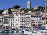 Le Suquet and the Harbour  Old Town  Cannes  Alpes Maritimes  Cote D'Azur  Provence  France