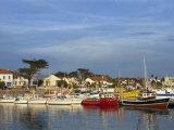 Harbour  La Cotiniere  Ile D'Oleron  Poitou Charentes  France  Europe