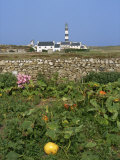 Creac'H Lighthouse  Ouessant Island  Finistere  Brittany  France  Europe