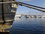 Harbour  Ponta Delgada  Sao Miguel Island  Azores  Portugal  Europe