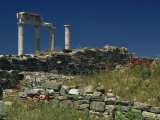 Temple of Apollo  Delos  UNESCO World Heritage Site  Greek Islands  Greece  Europe