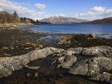 Loch Sunart  Looking East  Argyll  Scotland  United Kingdom  Europe