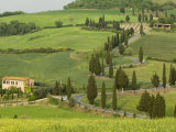Road from Pienza to Montepulciano  Monticchiello  Val D'Orcia  Siena Province  Tuscany  Italy