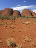 Olgas  Uluru-Kata Tjuta National Park  Northern Territory  Australia  Pacific