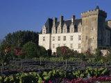 Gardens  Chateau De Villandry  Loire Valley  Centre  France  Europe