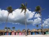 Saona Island  South Coast  Dominican Republic  Central America