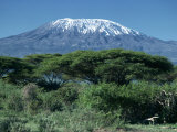 Mount Kilimanjaro  Tanzania  East Africa  Africa
