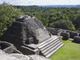 Plaza B Temple  Mayan Ruins  Caracol  Belize  Central America