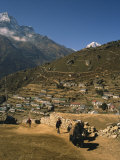 Yak Used for Transporting Goods Leaving the Village of Namche Bazaar in the Khumbu Region  Nepal