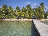 Jetty  Tobaco Caye  Belize  Central America