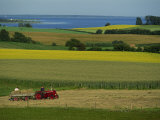 Tractor in Field at Harvest Time  East of Faborg  Funen Island  Denmark  Scandinavia  Europe
