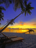 Deckchair on Tropical Beach by Palm Tree at Dusk and Blue Heron  Maldives  Indian Ocean