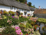 Cottage Garden  Branscombe  Devon  England  United Kingdom  Europe