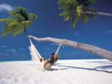 Woman in Hammock on Beach  Maldives  Indian Ocean