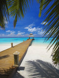 Jetty Leading Out to Tropical Sea  Maldives  Indian Ocean