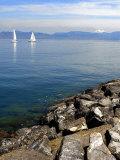 Sailing Boats  Lac Leman  Evian-Les Bains  Haute-Savoie  France  Europe