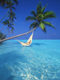 Woman in Hammock  Maldives  Indian Ocean