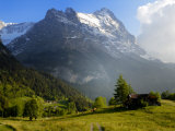 Meadow and Farm Building  Grindelwald  Bern  Switzerland  Europe