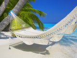 Empty Hammock on Beach  Maldives  Indian Ocean