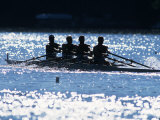 Silhouette of Men's Fours Rowing Team in Action  USA