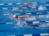 Female Swimmers Competing in a Freestyle Race