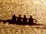 Silhouette of Men's Fours Rowing Team in Action  Atlanta  Georgia  USA