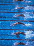 Start of a Men's Backstroke Swimming Race