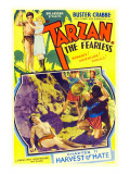 Tarzan the Fearless  Buster Crabbe  Julie Bishop  1933