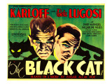 The Black Cat  Boris Karloff  Bela Lugosi  1934
