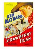 Strawberry Roan  1933