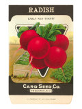 Radish Seed Packet