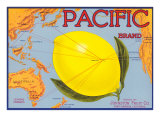 Pacific Lemon Crate Label