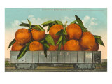 Giant Oranges in Rail Car