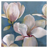 New Magnolias I