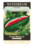 Watermelon Seed Packet