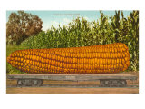 Giant Corn on Flatbed