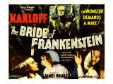 The Bride of Frankenstein  Boris Karloff  Elsa Lanchester  Colin Clive  Valerie Hobson  1935