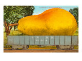 Giant Pear in Rail Car