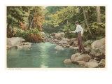 Trout Fishing in Creek