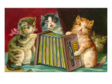 Kittens Playing Concertina
