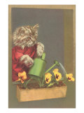 Dressed Kitten Watering Pansies