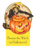 Beware the Witch on Halloween  Jack O&#39;Lantern