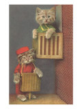 Dressed Kittens  Organ Grinder