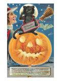 Black Cat with Halloween Precautions