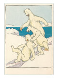 Fun for Polar Bears