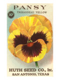 Pansy Seed Packet