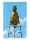 Pineapple Water Tower  Hawaii