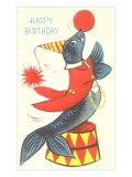 Happy Birthday  Performing Seal