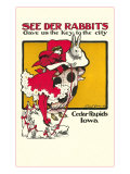 See Der Rabbits  Cedar Rapids  Iowa