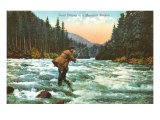 Trout Fishing in a Mountain Stream